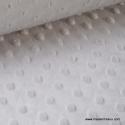 Tissu minky POIS GRIS .x1m