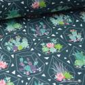 Tissu popeline coton imprimé Cactus Box