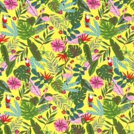 Tissu jersey motifs Feuilles de palme, perroquets et flamants fond jaune- Oeko tex