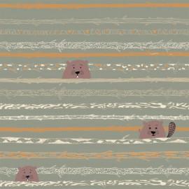 Tissu popeline Oeko tex imprimé Castors par Katia Fabrics - oeko tex