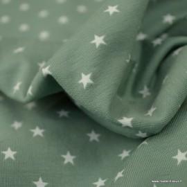 Tissu jersey Oeko tex motifs étoiles fond céladon