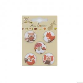 Boutons sur carte motifs animaux Rouille