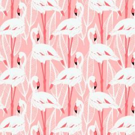 Tissu Toile de coton biologique Canva motifs flamants roses fond écru - Katia Fabrics