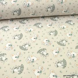 Tissu oeko tex coton Koaz motifs Koala et ratons laveurs fond Lin
