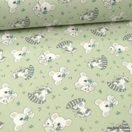 Tissu oeko tex coton Koaz motifs Koalas et ratons laveurs fond vert sauge