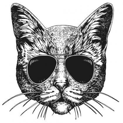 Transfert textile Thermocollant motif chat à lunettes