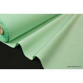 TAFFETAS Ottoman mariage vert x50cm