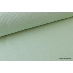 Tissu Jersey coton matelassé 1x1 Menthe .x1m